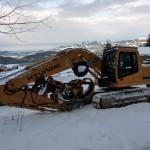 Eine kräftige Baumbearbeitungsmaschine zum Entasten