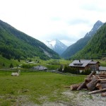 Ich fahre mit Bus und Bahn zurück nach Vorarlberg