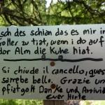 ... über den Südtiroler Dialekt staunen ...