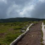 Aufstieg zu den Steinernen Mandlen