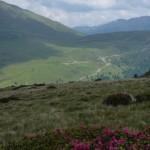 Im Osten unserer breiten grasigen Gratkuppe, das Öttenbacher Tal